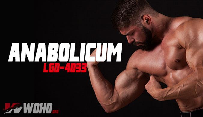 ligandrol anabolicum lgd 4033
