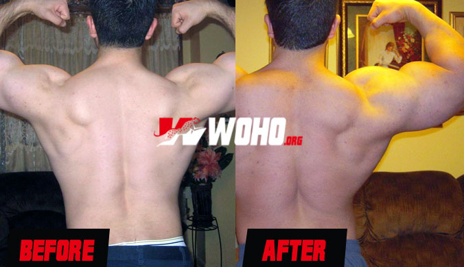 Nandrolone results before and after