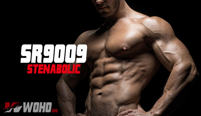 SR9009 (Stenabolic) - The Ultimate Guide For Beginners 2019
