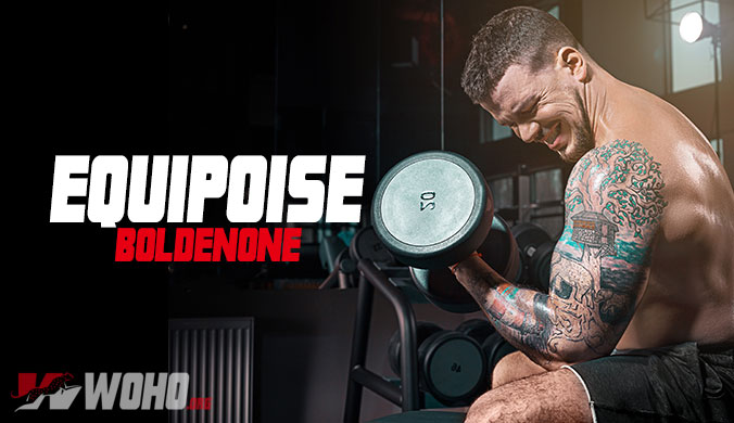 Equipoise (Boldenone) - Don't Buy Until You Read This 2019 Review!