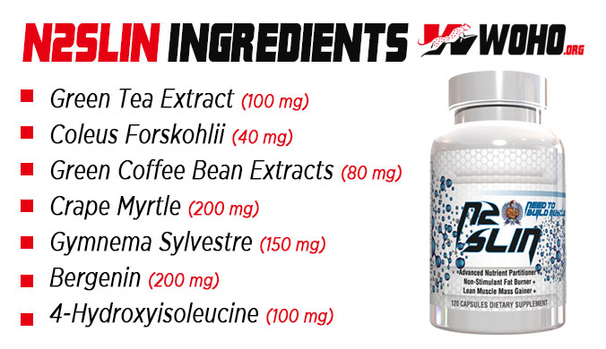 Ingredients for the best fat loss supplements